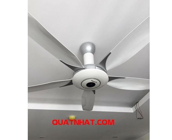 quat-tran-panasonic-f60wwk-5-canh-7-org